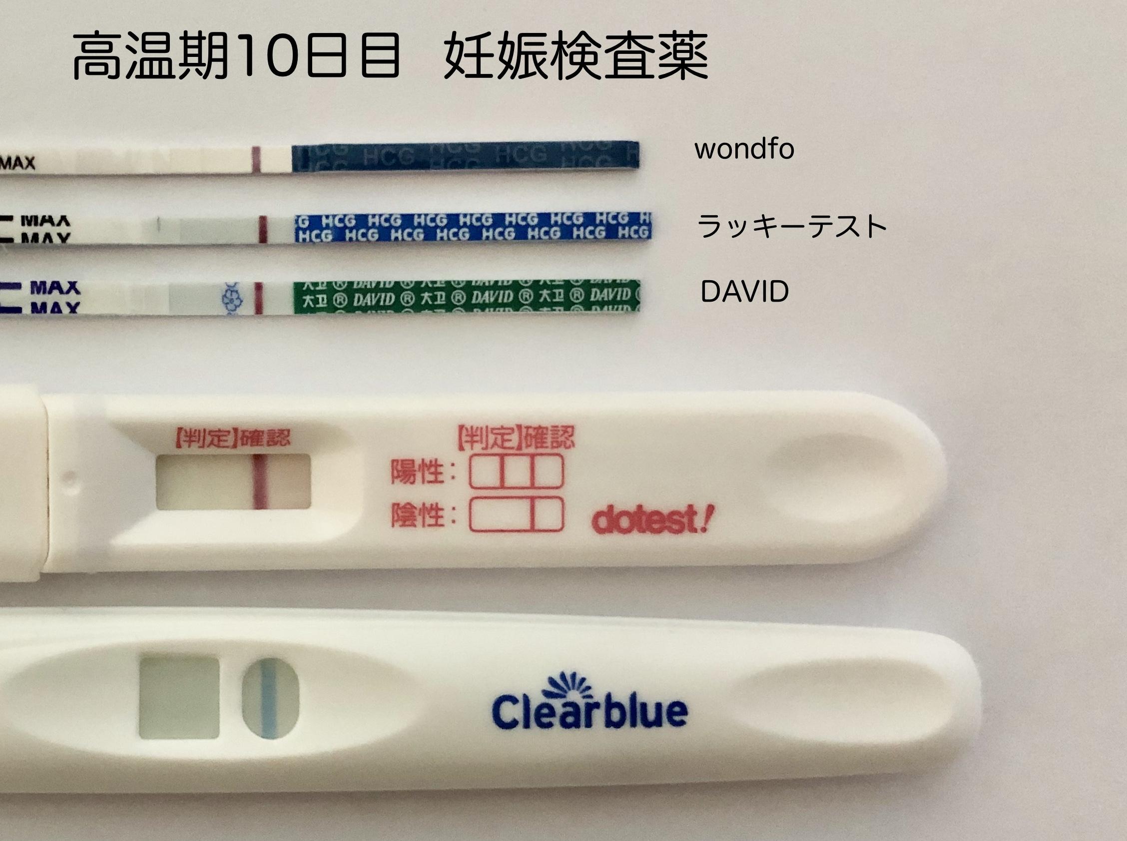 妊娠検査薬 陽性から陰性